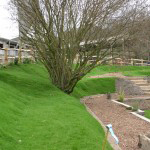 Turfed garden banks